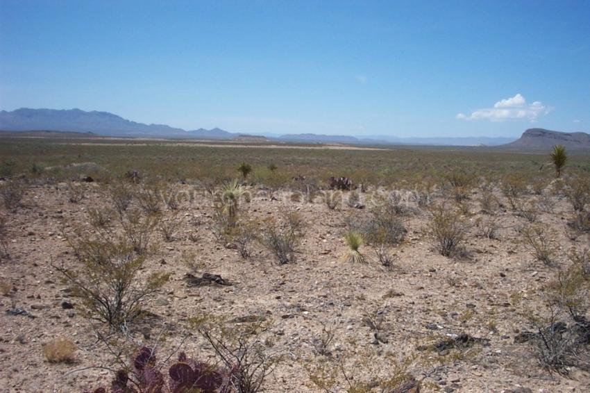 hunting ranch west texas, hunt texas, gunsight ranch, mile high ranch, texas land for sale, sierra blanca texas