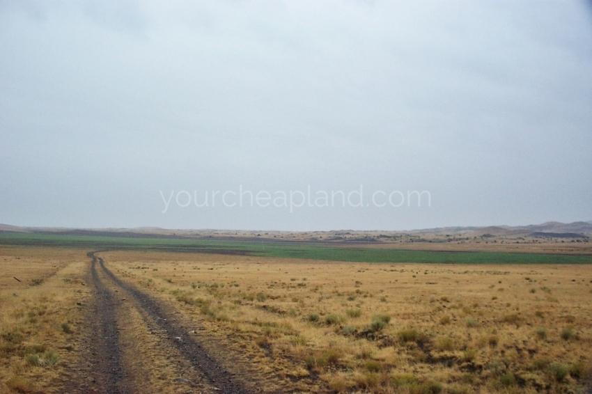 Concho Lakeland Area