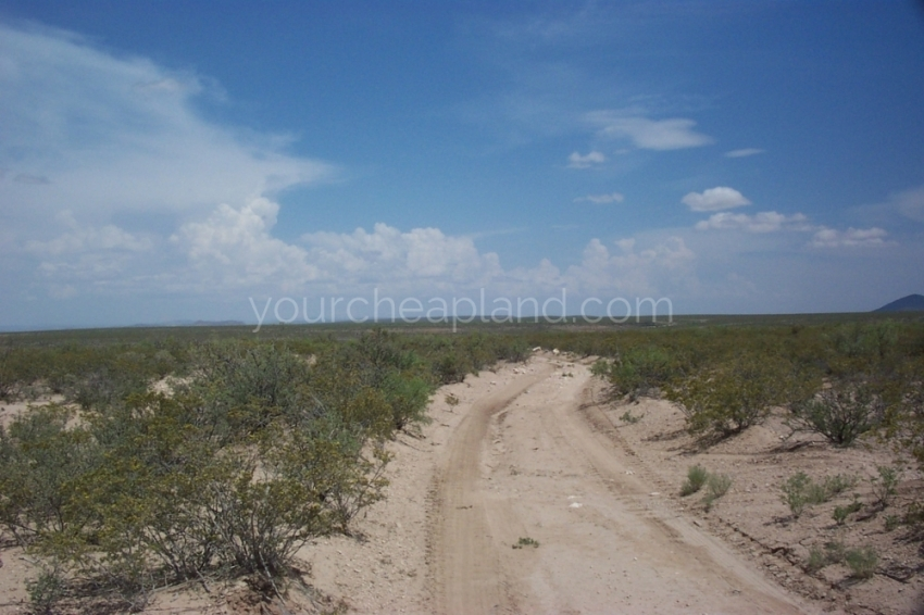 One of the Roads Through the Hunting Ranch