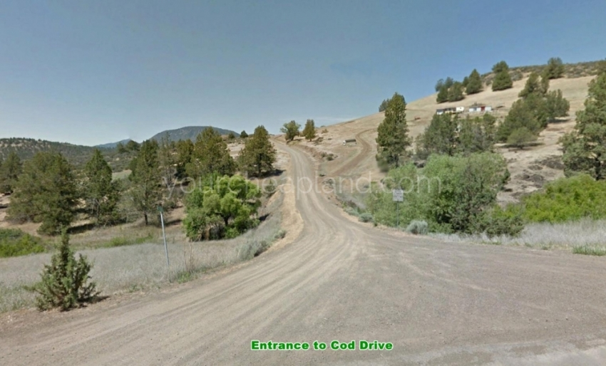 4.29 acre property on Cod Drive in California