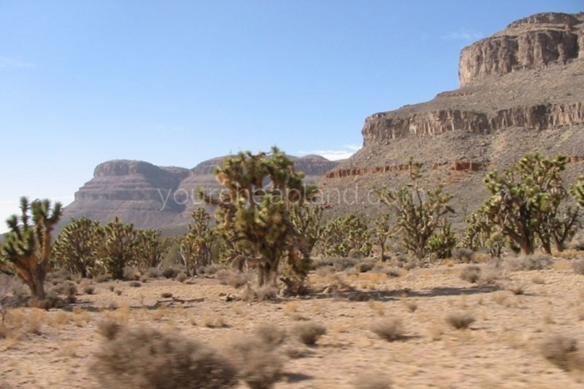Driving down Diamond Bar Road towards the Grand Canyon with Grand Wash Cliffs on the Left