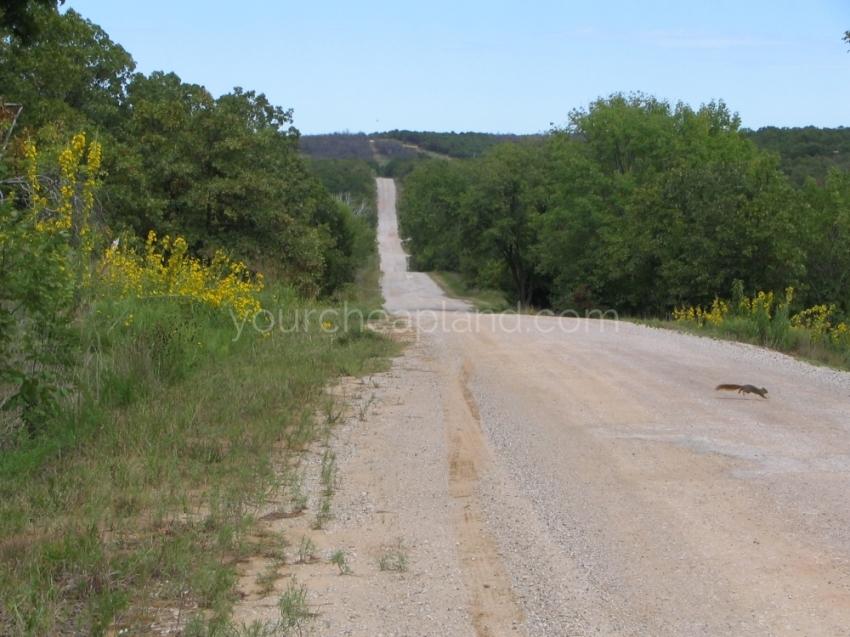 Road Through Frontier Shores