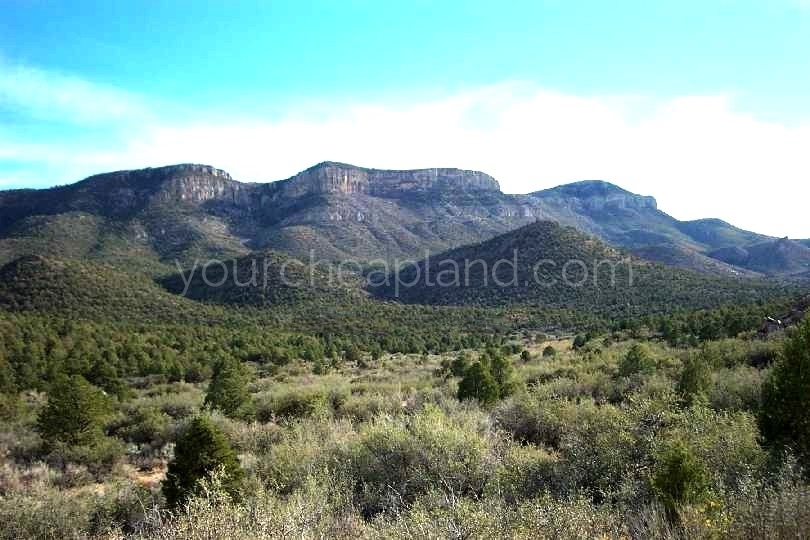 Arizona Land