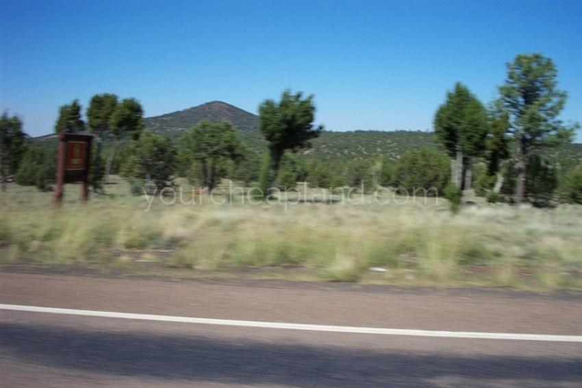 Best Arizona Land